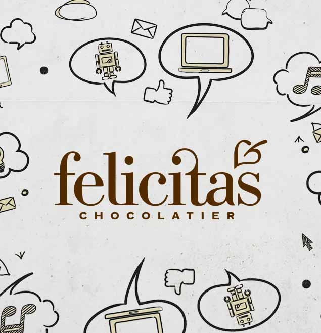 Felicitas Teaser SchweigerDesign Strategische Webseite Responsive